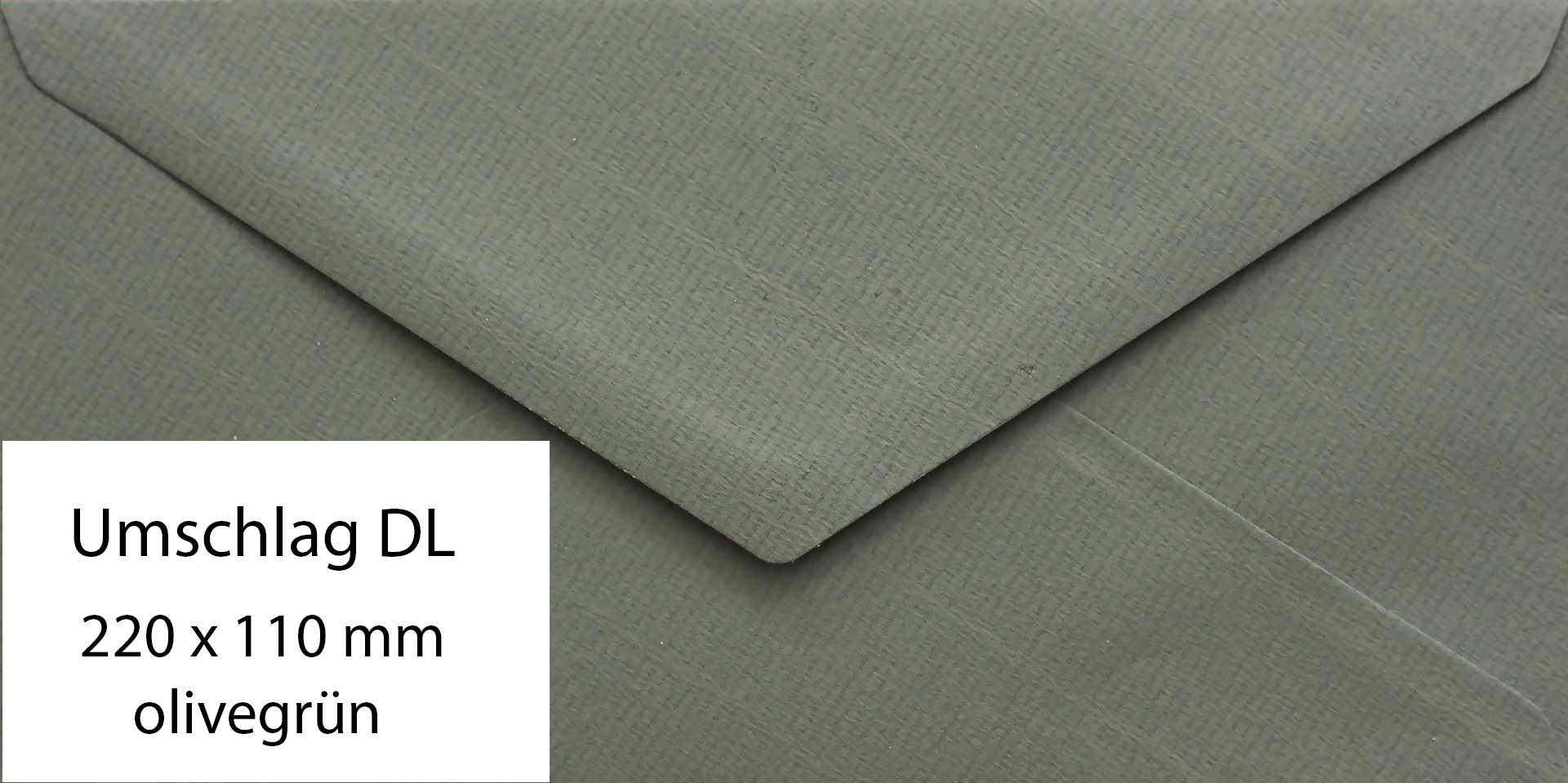 Umschlag-DIN-lang-Rueckseite-olivegruen