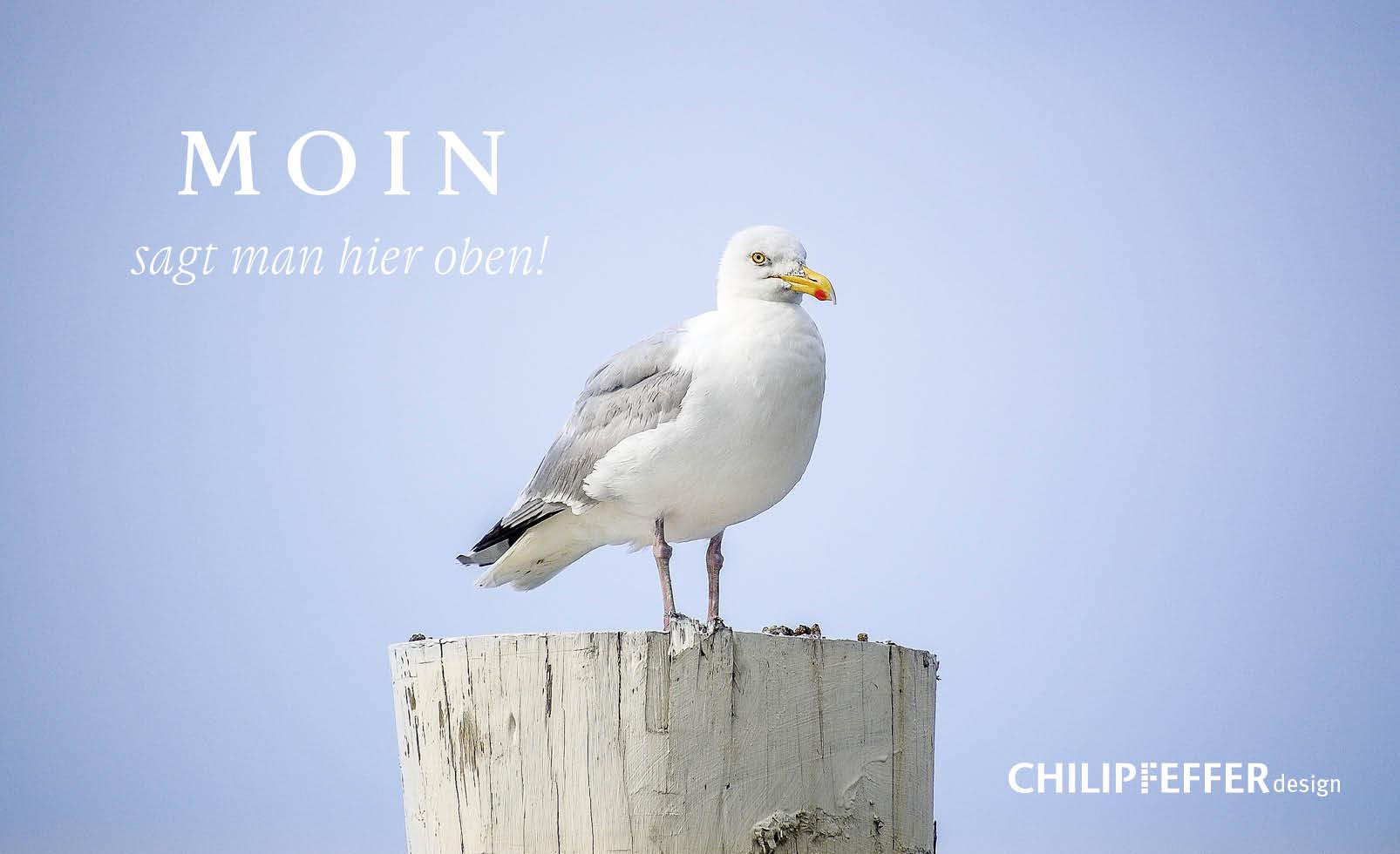 CHILIPFEFFERdesign_ueber_uns